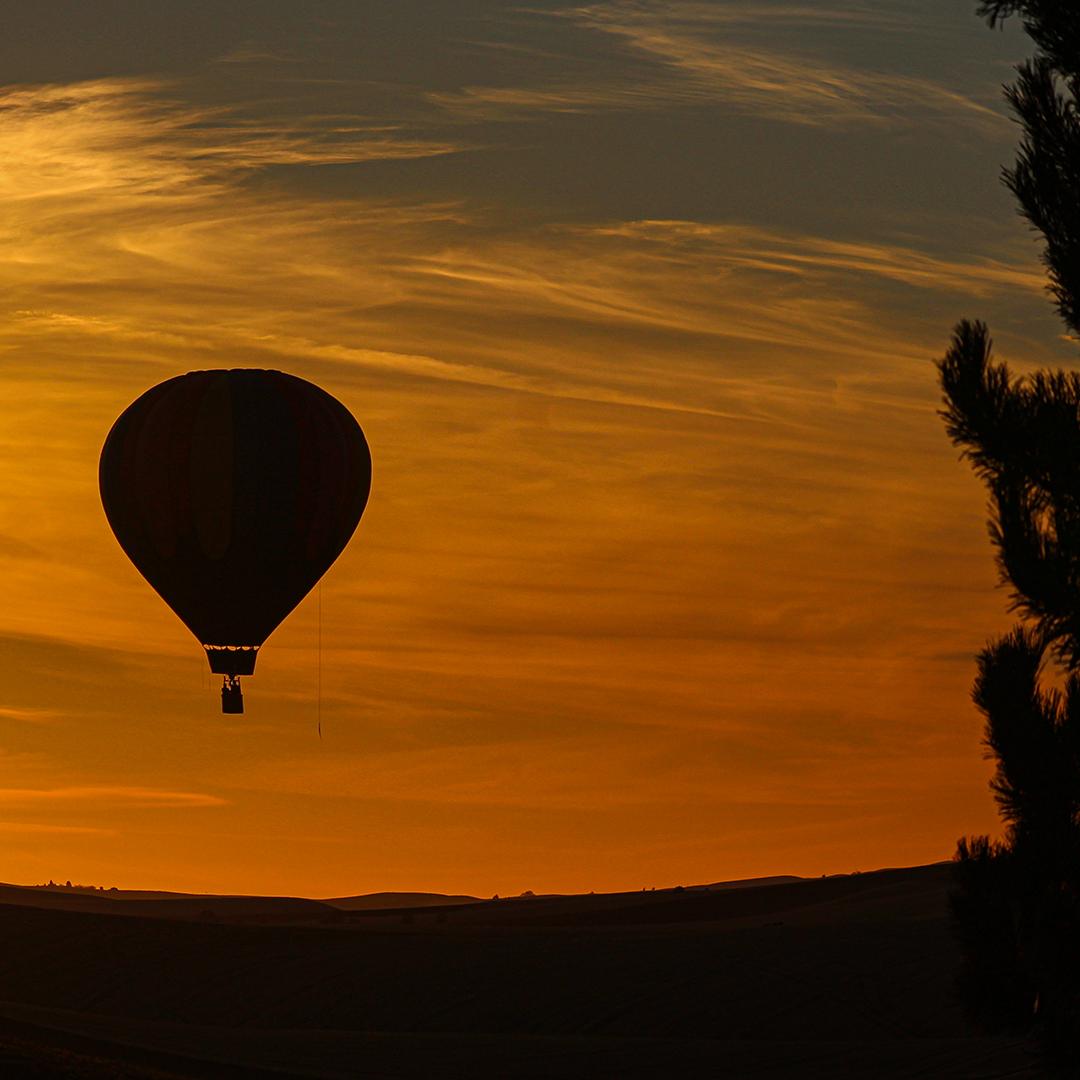Hot Air Balloon Sunset on the Palouse